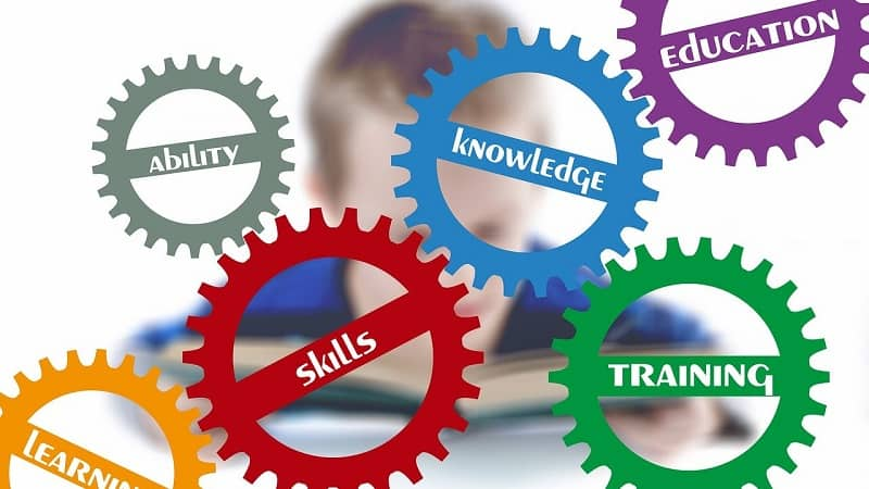 skills for project manager
