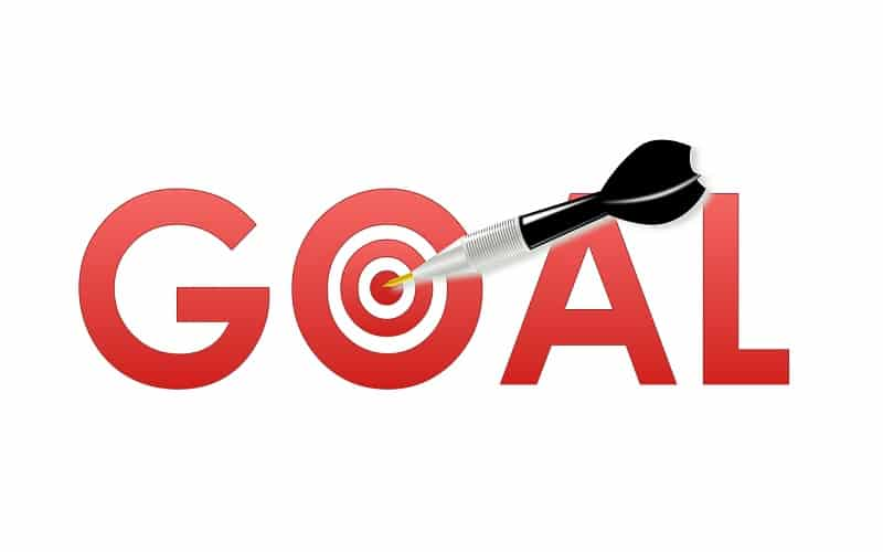 Project Goal Examples